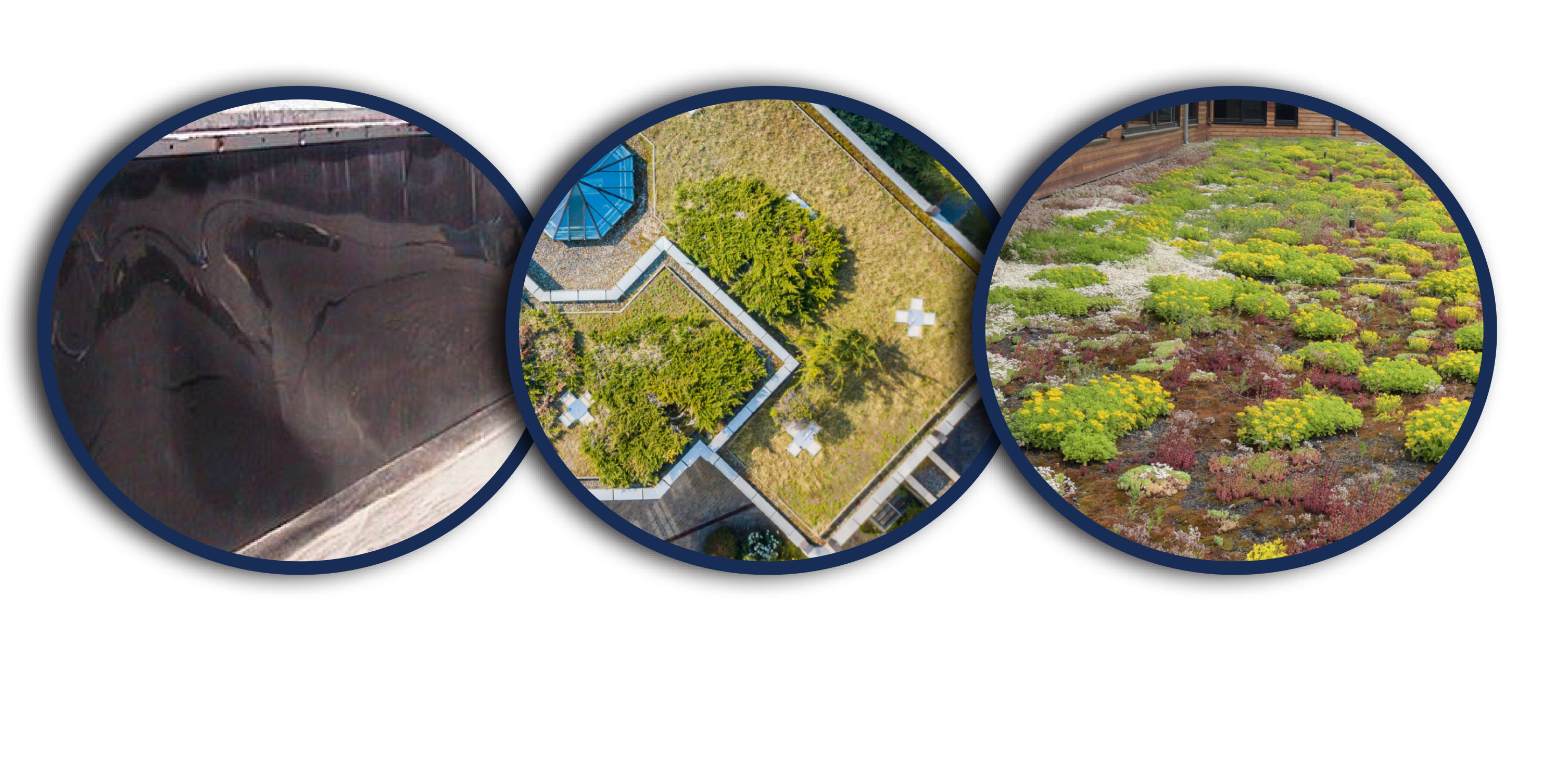 Green-Roof-Web-Images_03